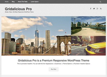 screenshot-gridalicious-pro