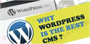 Why to Use WordPress For Making Website