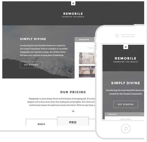 Remobile Pro Theme - Genesis Child Paid Themes