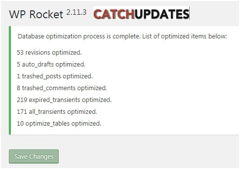WP Rocket Optimize Database