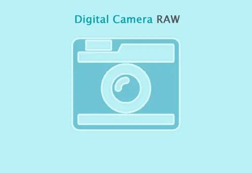 デジタルカメラ RAW 互換性アップデート 6.19キタ!