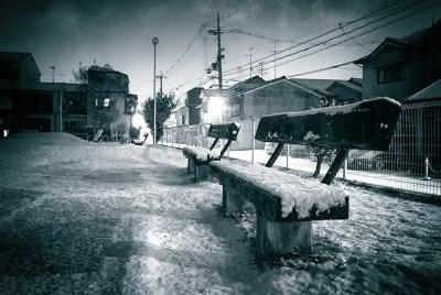 寒い寒いと思ったら雪。