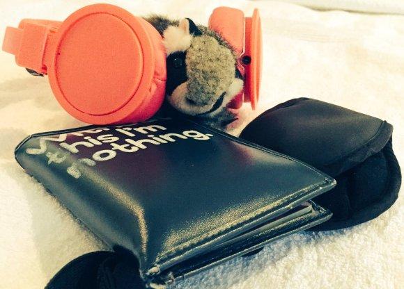 tiny_raccoon_passport.jpg