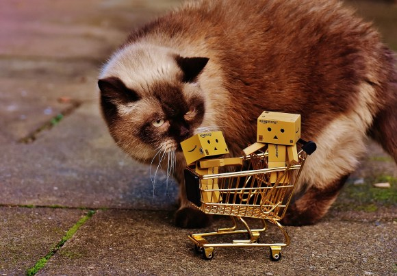 Shopping Cart Shopping Cat Figures Curious Danbo