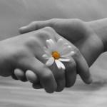 O exercício do perdão