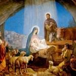 Uma prova biológica – e bela – de que Cristo nasceu em dezembro