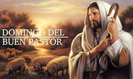 IV Domingo de Pascua