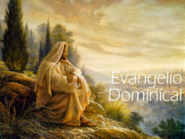 Evangelio Dominical – 1 junio 2014