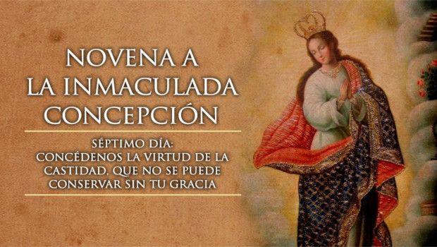 Día 7 – Novena a la Inmaculada Concepción de María
