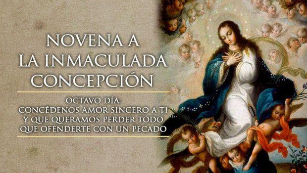 Día 8 – Novena a la Inmaculada Concepción de María