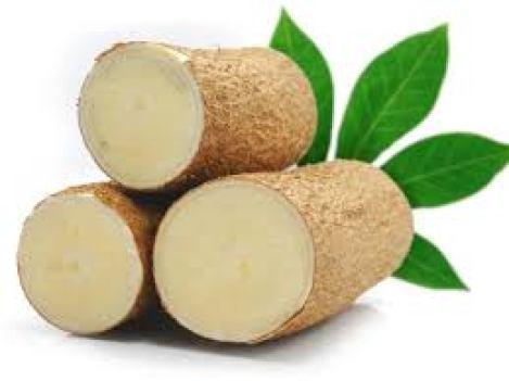 cassava-prioprietà