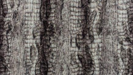 Boa Cuddle Fabric