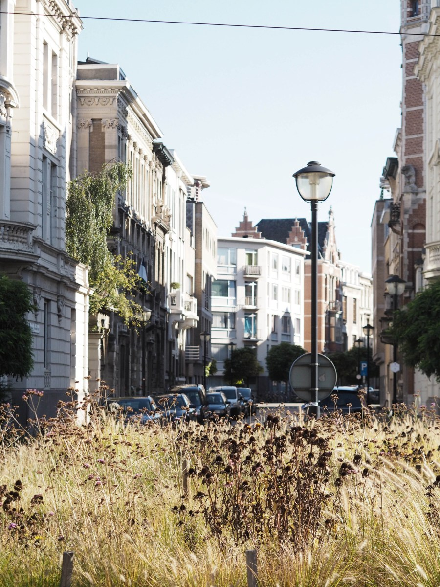 Cogels Osylei, a beautiful art nouveau street in Antwerp