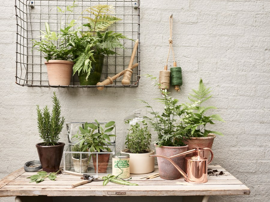 Simple everyday objects from Manufactum - garden ideas