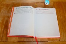 Daily Greatness Journal - forgiveness and acknowledge personal achievements, two page spread