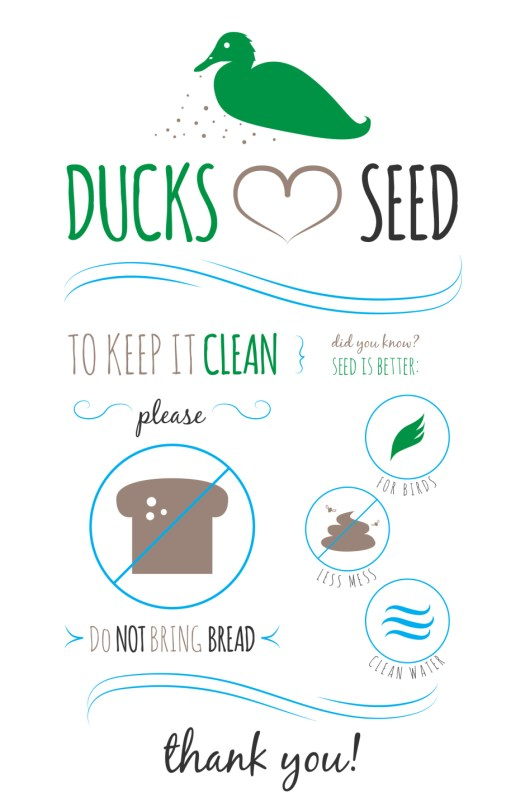 Ducks Love Seed