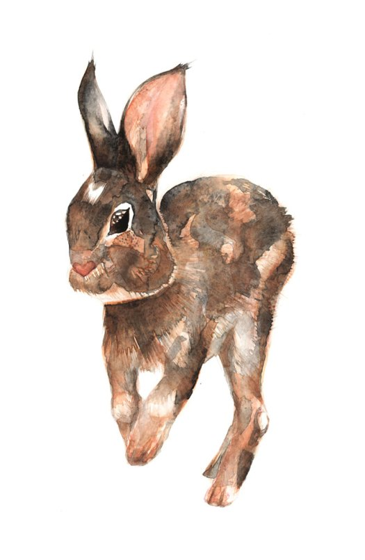 BunnyJump