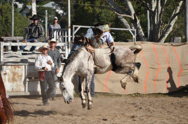 31262_1391007128800_4190768_n dayboro rodeo Dayboro Rodeo 31262 1391007128800 4190768 n