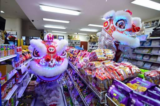 DSC_9918_v1 lam tu luan kungfu Chinese New Year 2015 with Lam Tu Luan Kungfu DSC 9918 v1