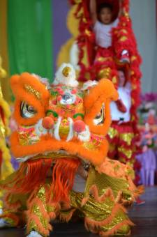 DSC_1055 buddha birth day Buddha Birth Day Festival 2015 DSC 1055
