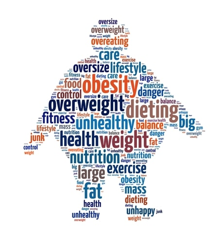 Image result for weight of america