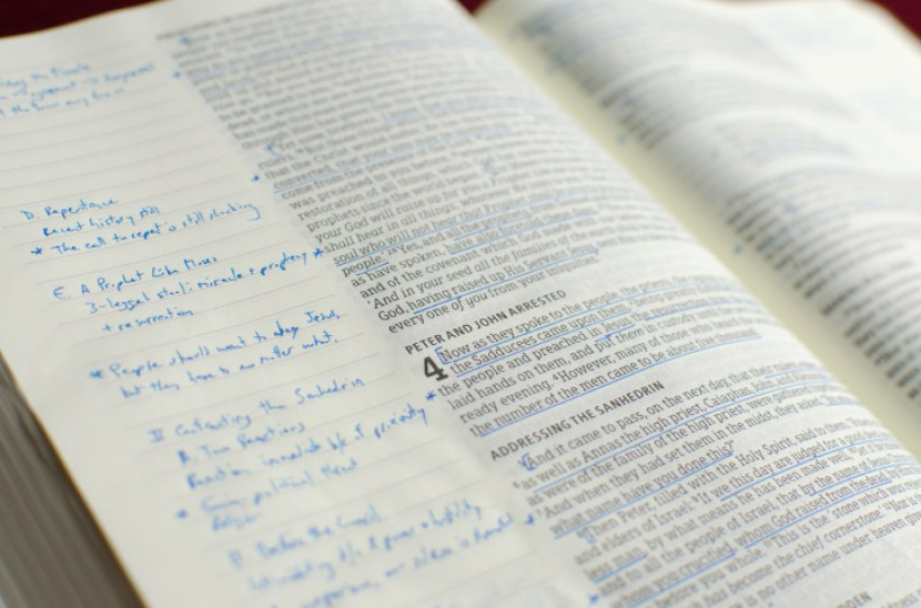 Single column bible with notes