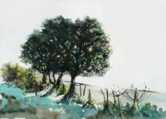 Ancient boundary - sold watercolour
