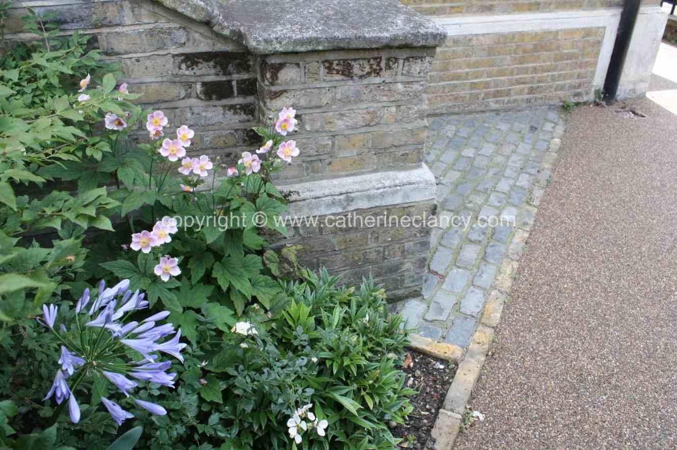 london courtyard front garden 3