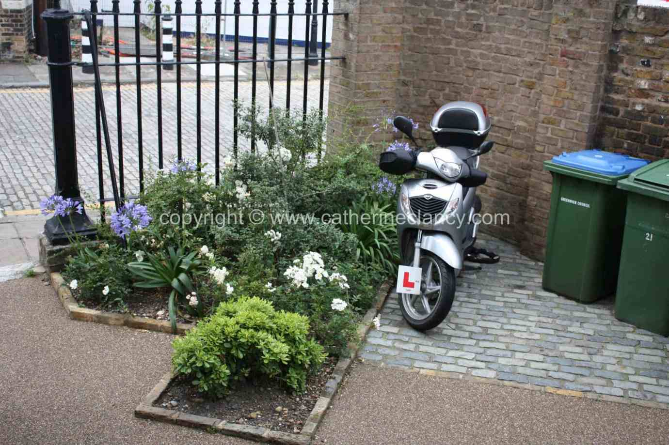 london-courtyard-front-garden-5