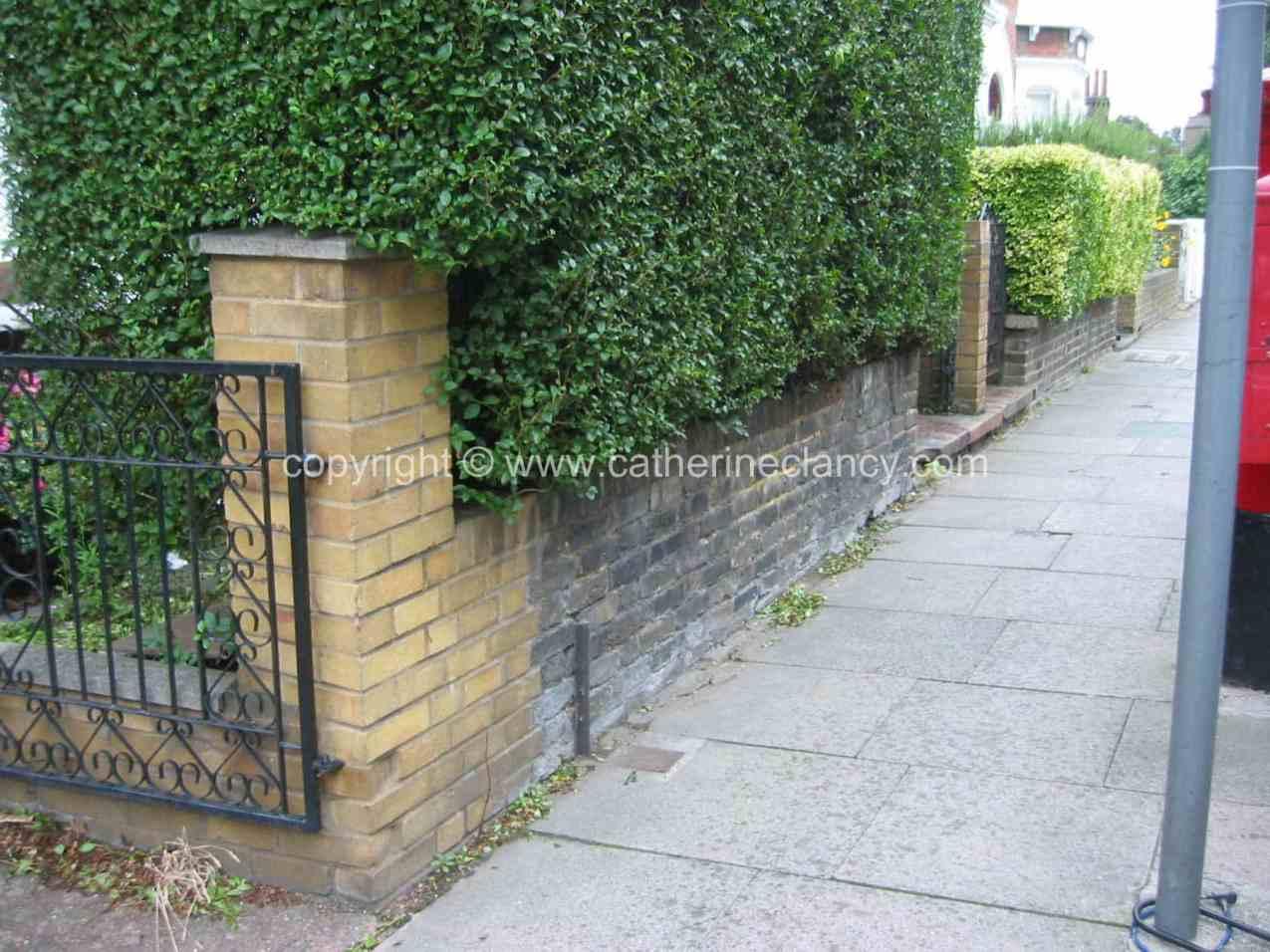 urban-front-garden-5