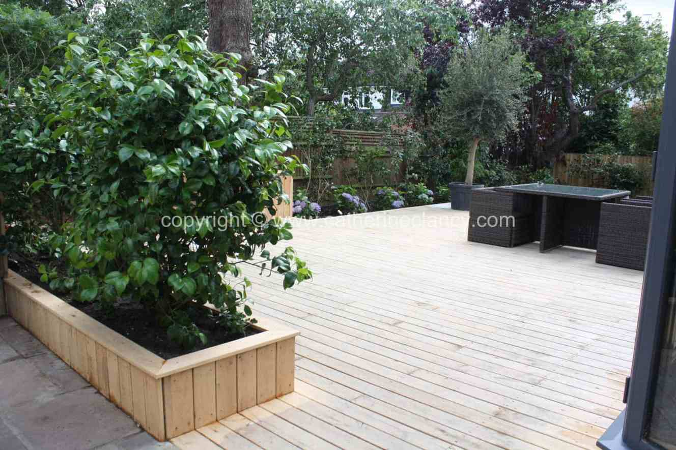 blackheath-deck-garden-5