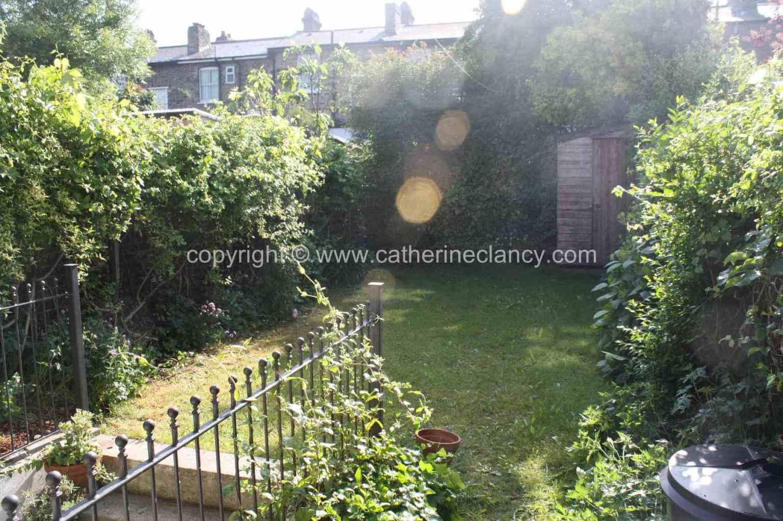 long-thin-terraced-garden-14