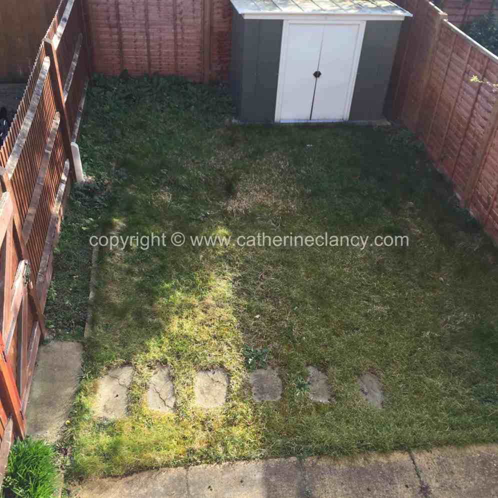 peckham-garden-before-garden-design