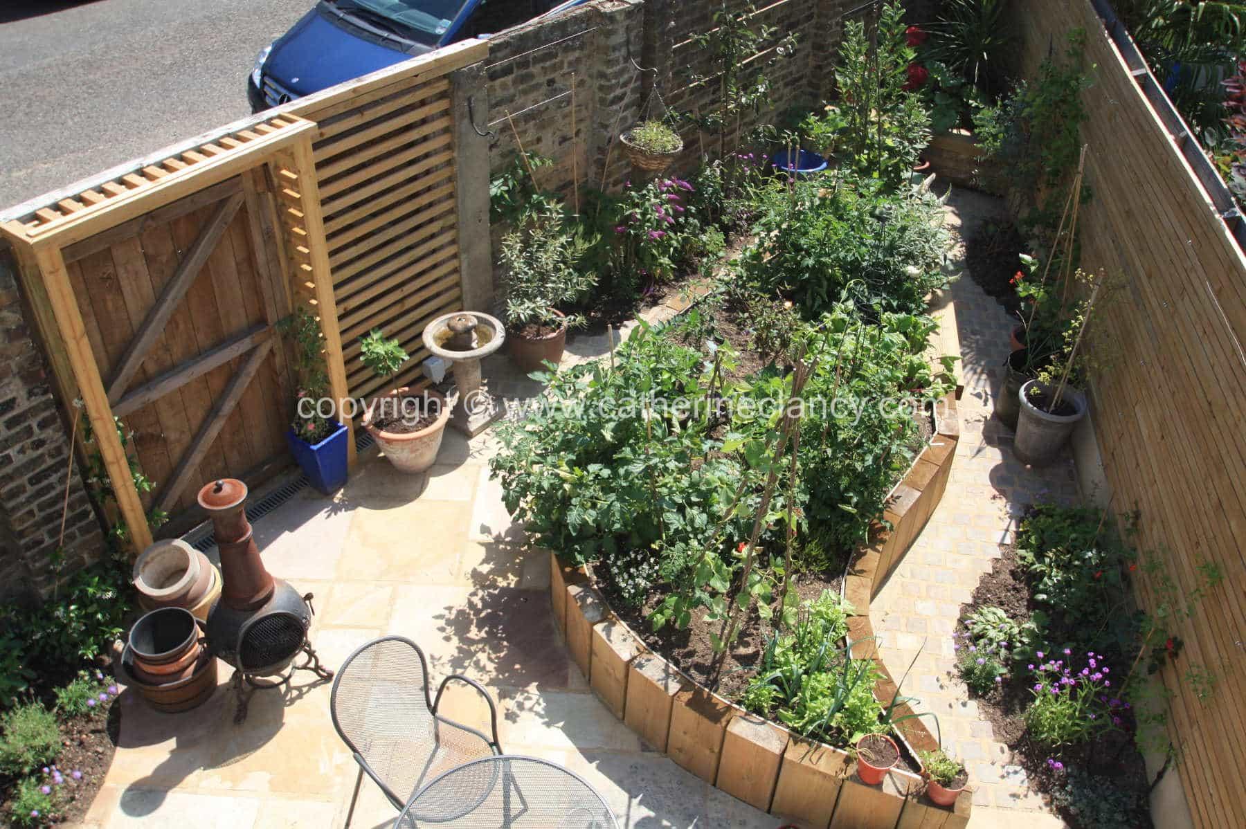 tiny-edible-garden-1
