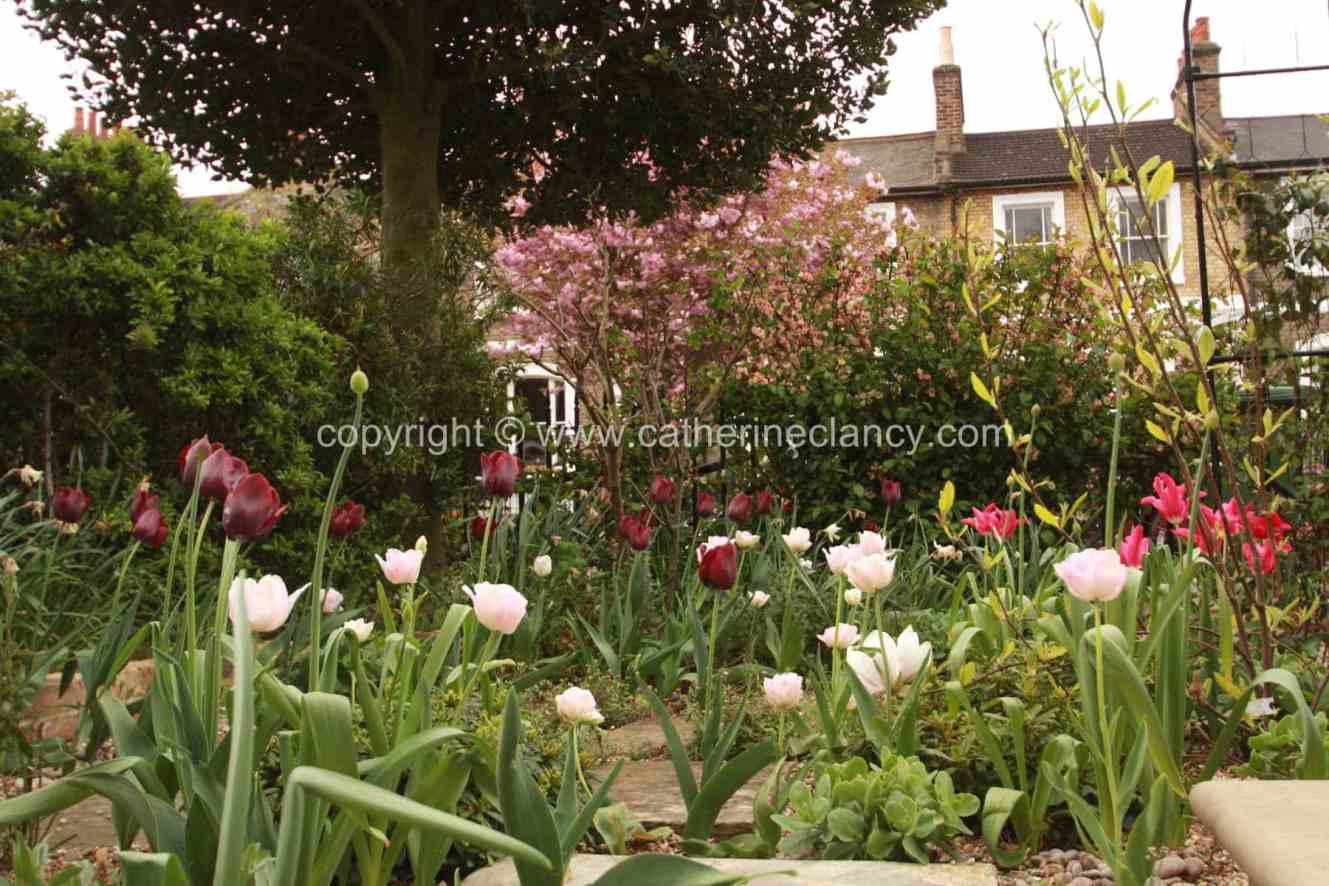 west-greenwich-gravel-garden-8