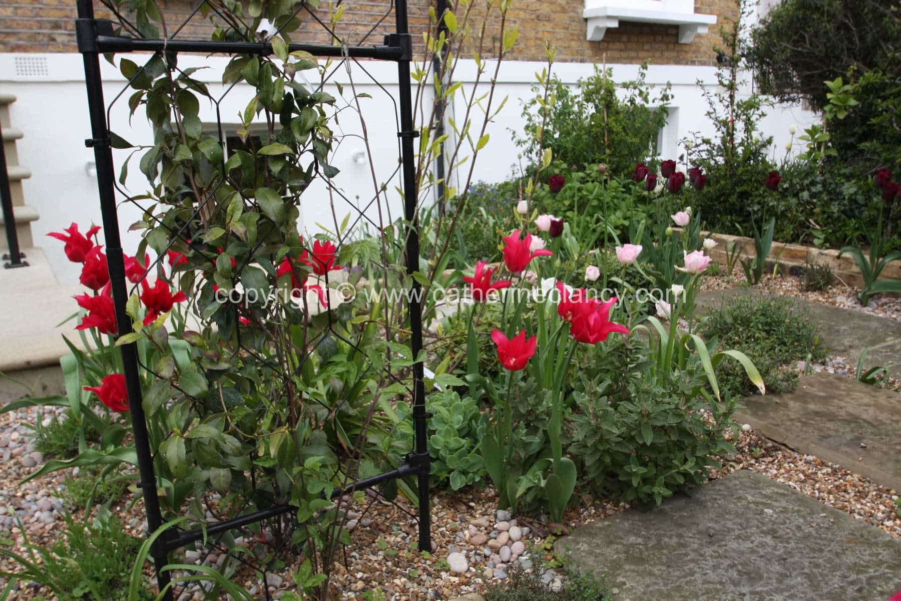 west-greenwich-gravel-garden-9