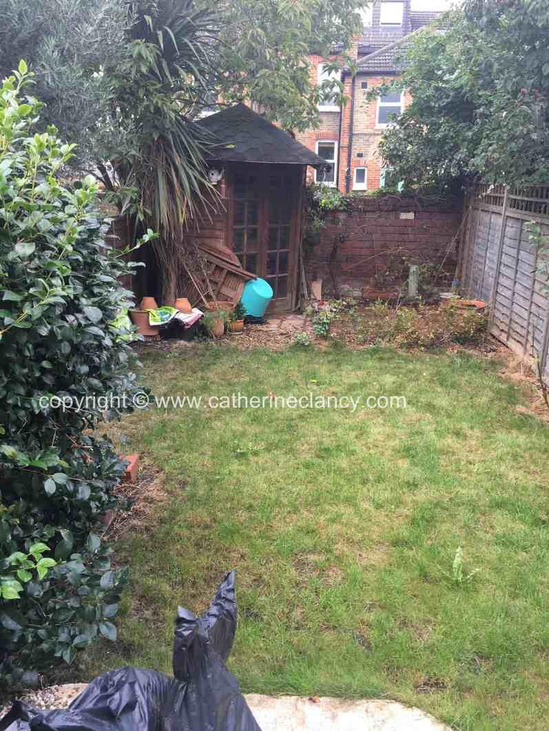back garden before redesign