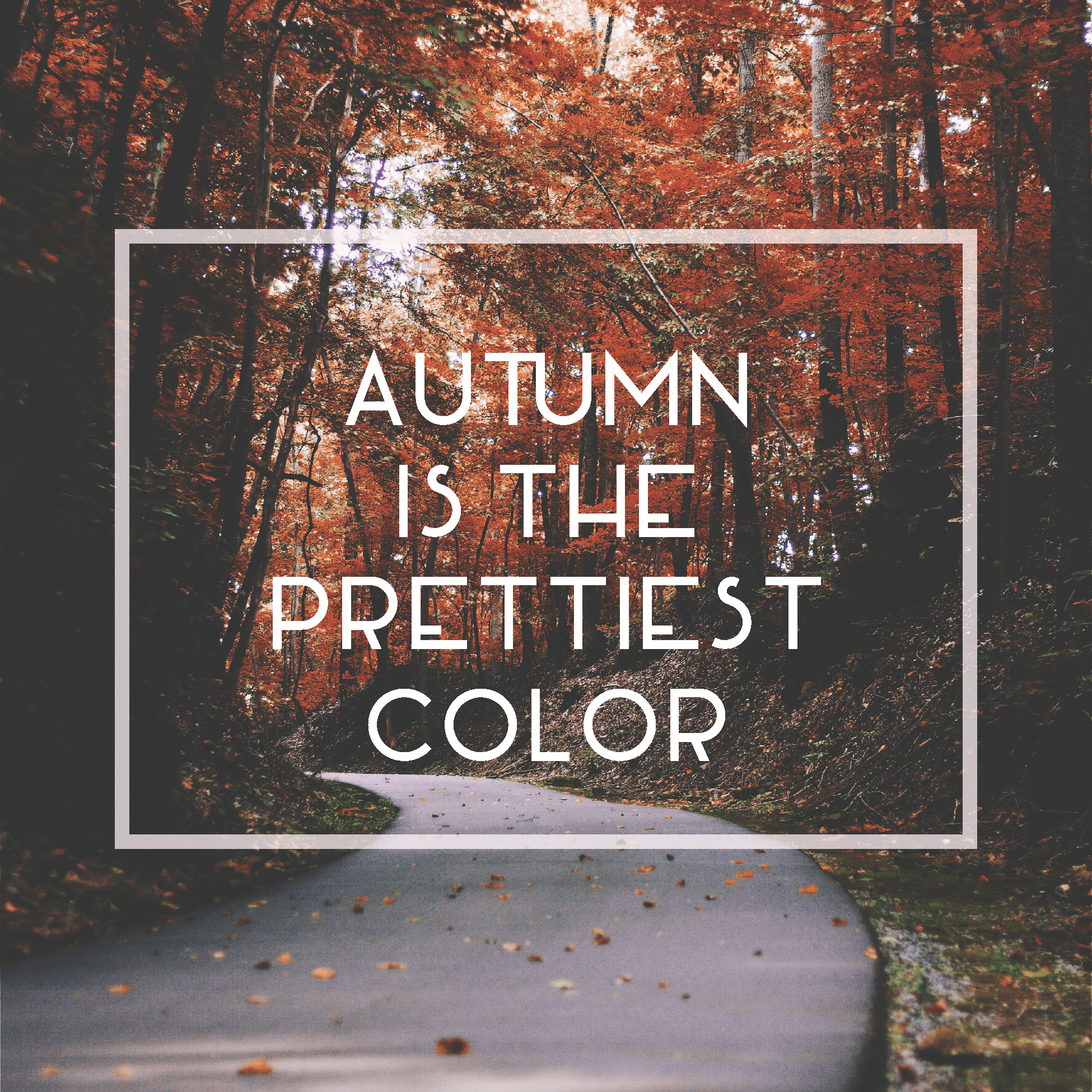 Autumn is the Prettiest Color