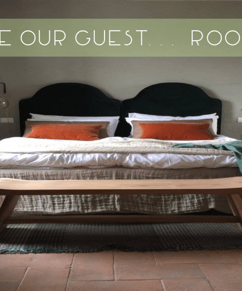 Catherine French Design - Guest Room Blog Article