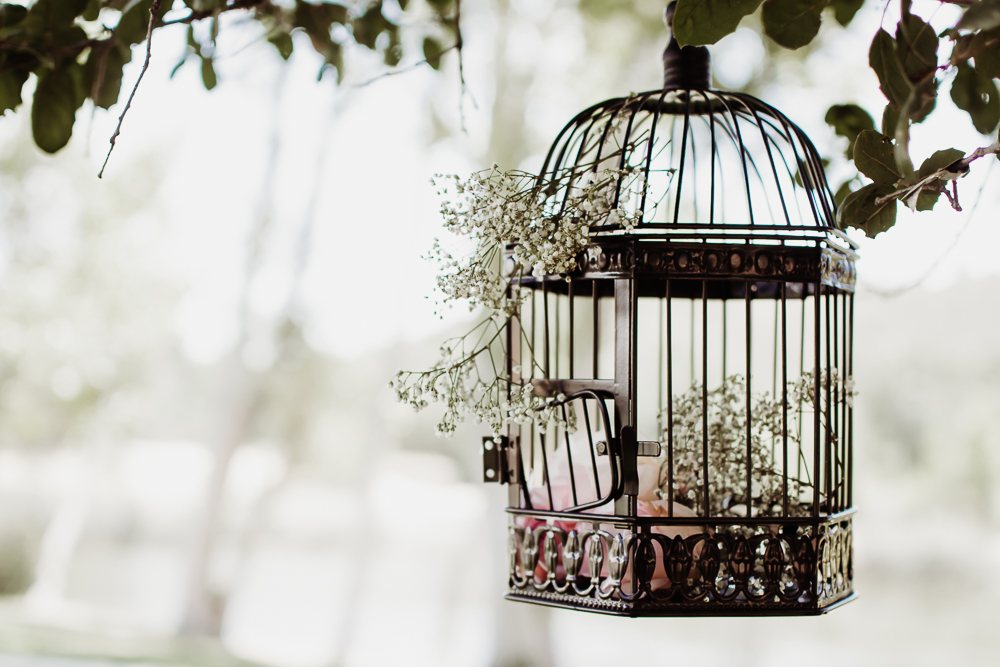 bird cage decor {virginia beach wedding couples family newborn photographer}