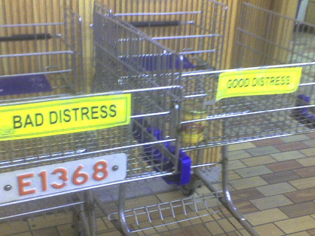 Image of grocery carts.