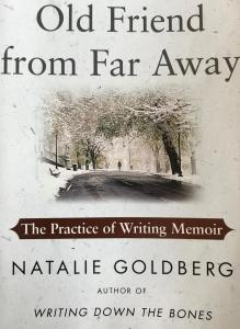 Old Friend from Far Away Book Cover