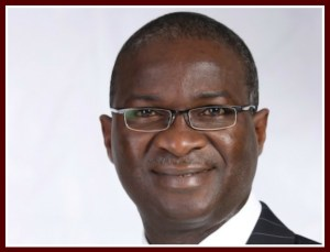 Babatunde Fashola, Minister of Power, Works & Housing