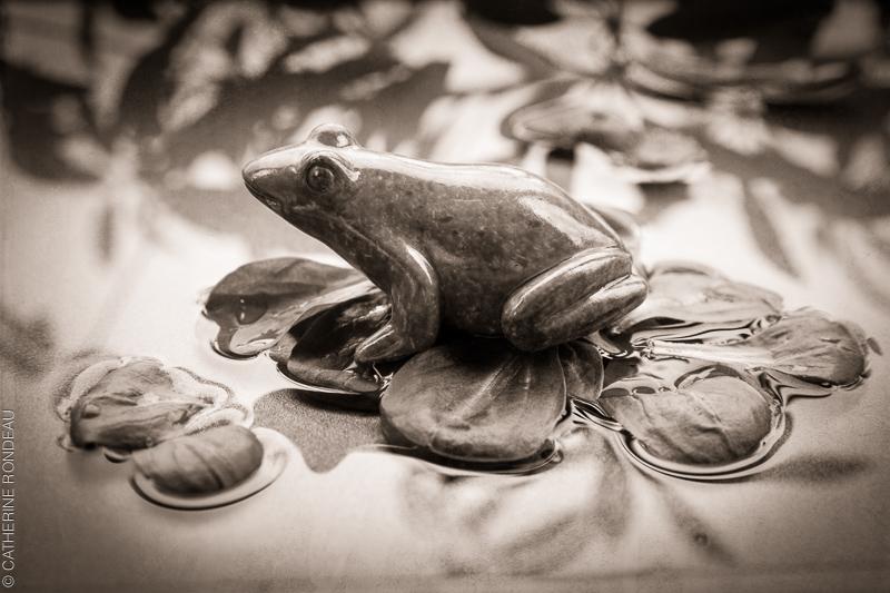 Figurine de grenouille sur des feuilles de laitue dans un bassin d'eau.