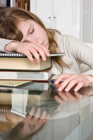 Lazy Job Seeker: CatherinesCareerCorner