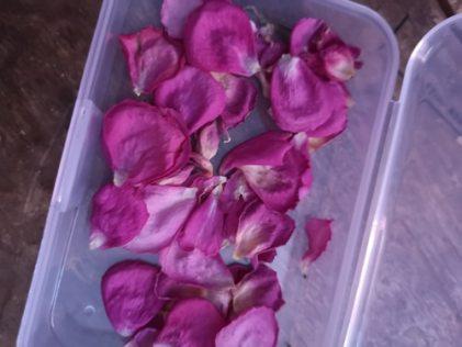 petales-de-rose-seches-maison
