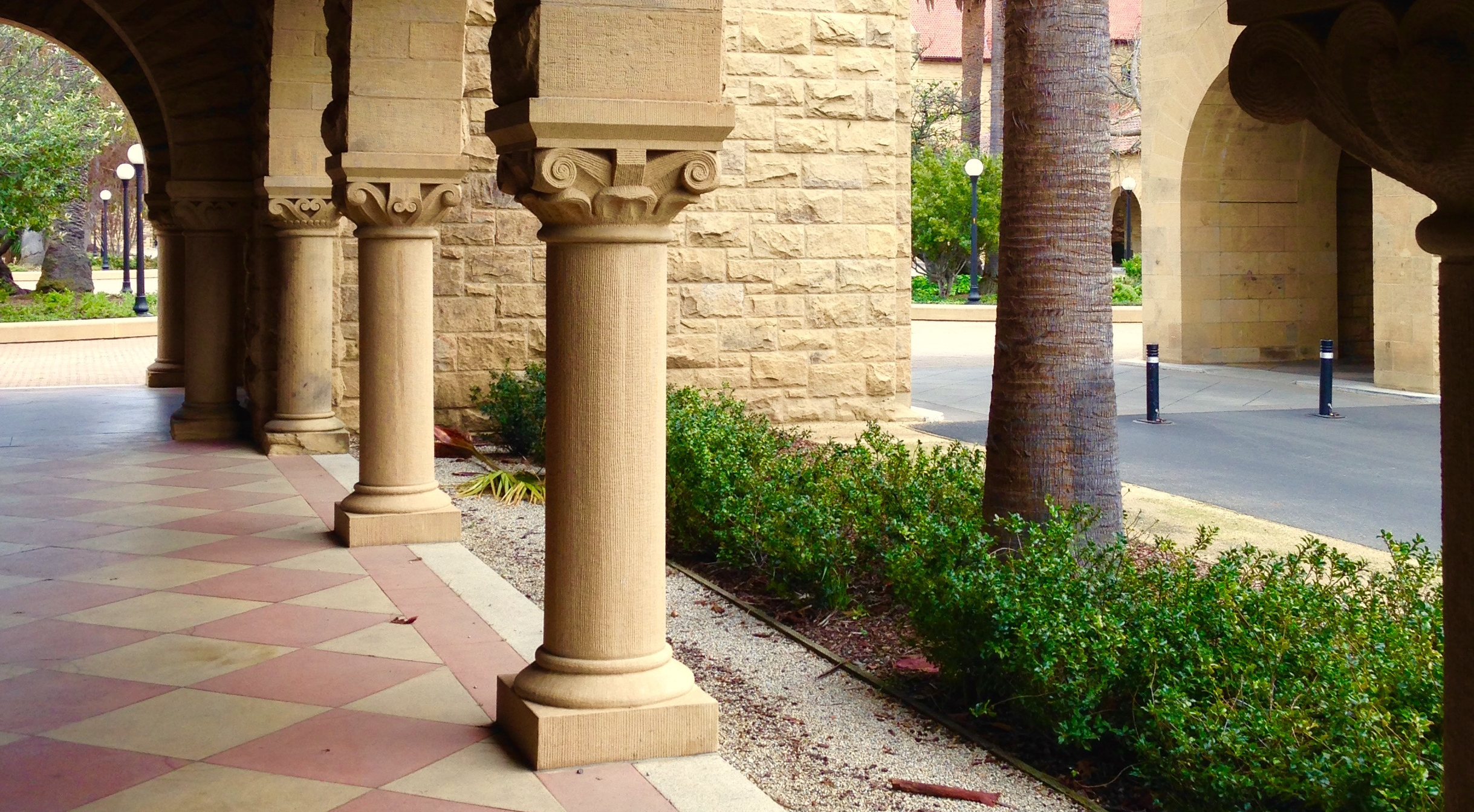 video my sophomore winter quarter at stanford cath in