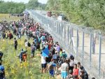 Record high for refugee numbers