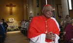 """Cardinal Gregory """"saddened"""" by divisions in US Church"""