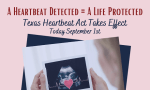 First doctor sued under Texas heartbeat abortion law